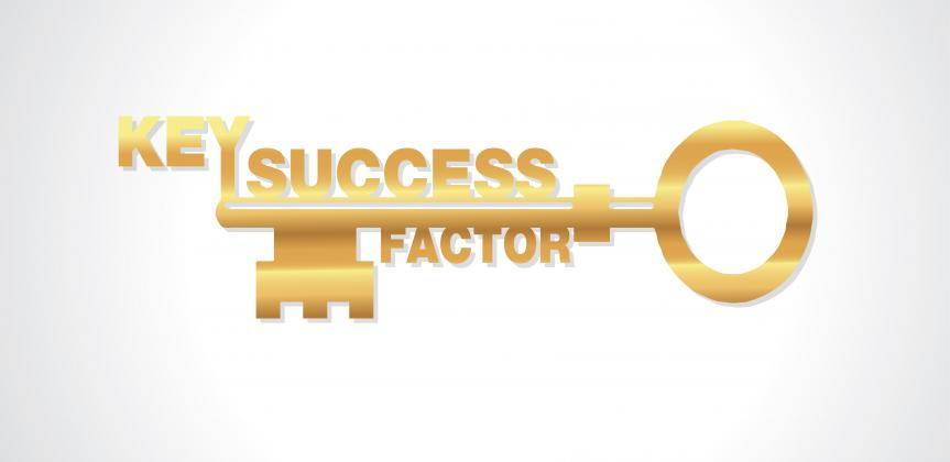 Picture of a key with the word success
